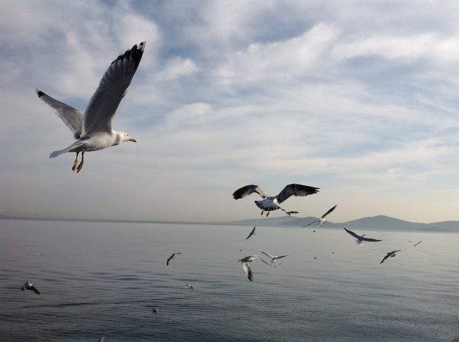 iPad Dec 2013 Bosphorus
