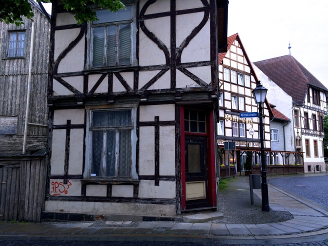 Everywhere timbered