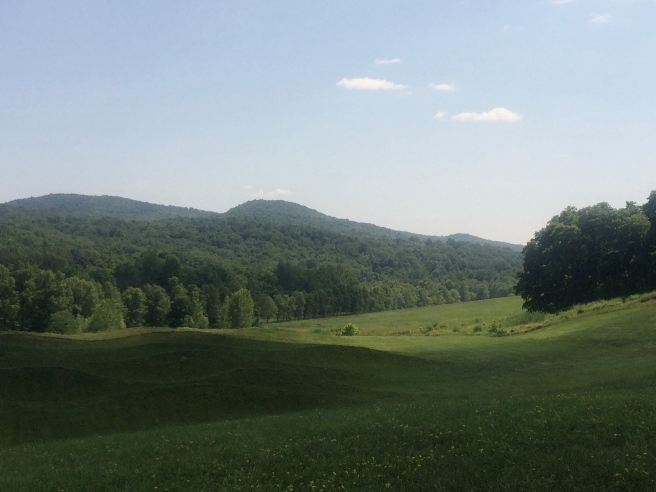 Maya Lin Storm King Wavefields
